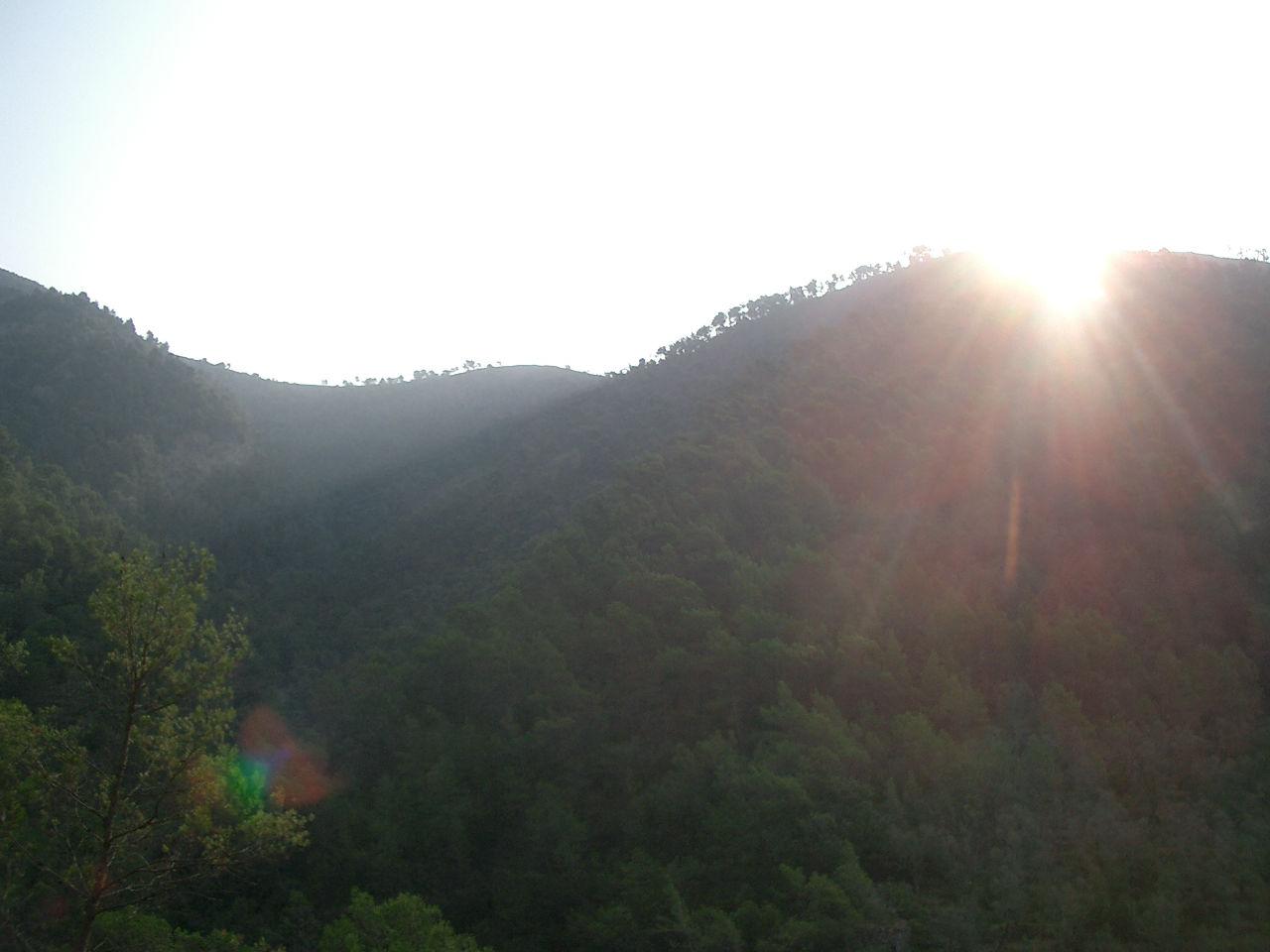 Le parcours en forêt : l'idéal pour se ressourcer !